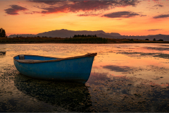 Senior & Evening Winner - Tranquil setting ©Herman Olivier