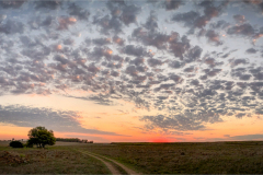 Panorama sunset ©Herman Olivier  - Cellphone Winner